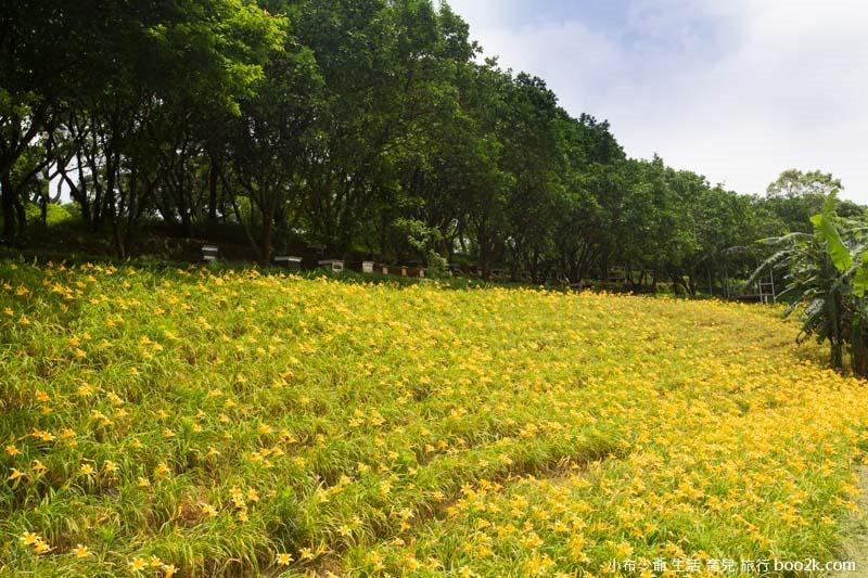 芝柏山莊 牧蜂農莊-19