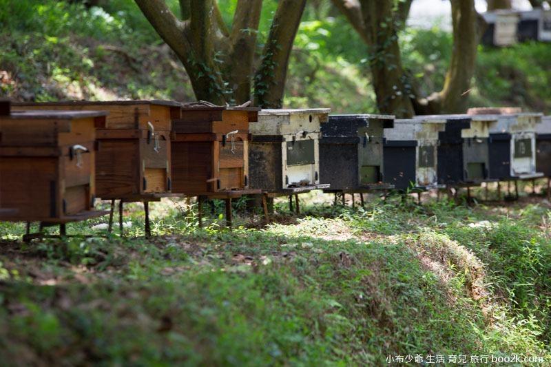 芝柏山莊 牧蜂農莊-32