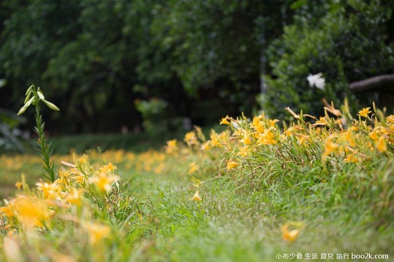 芝柏山莊 牧蜂農莊-38