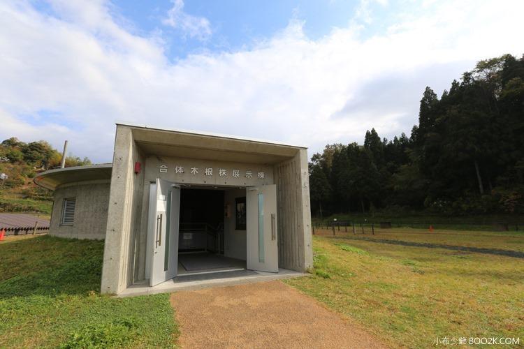 [2014島根自駕遊]三瓶山小豆原埋沒林公園
