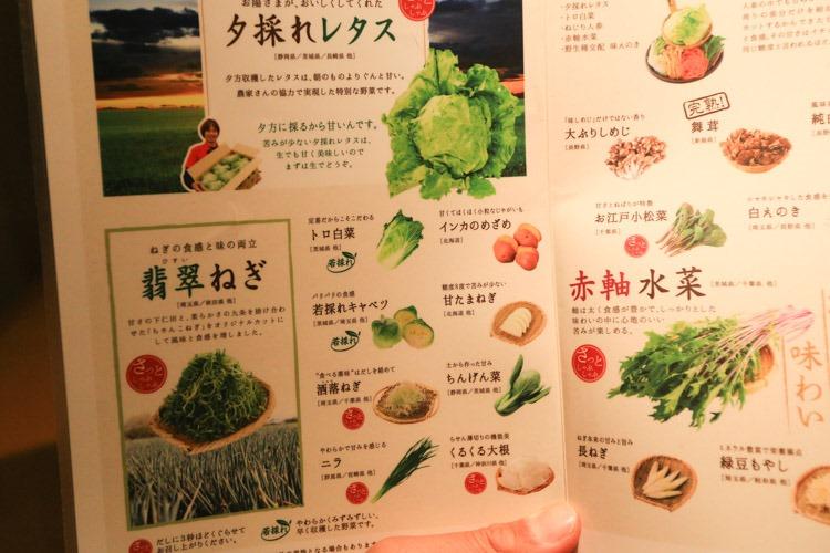 道頓崛溫野菜 (9 - 23)