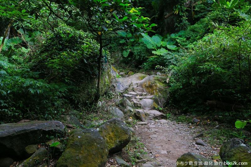 青山步道-22