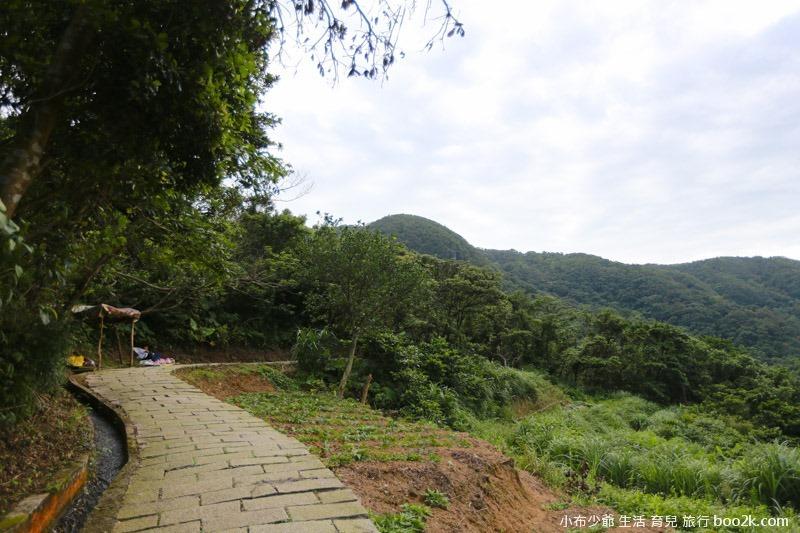 青山步道-8