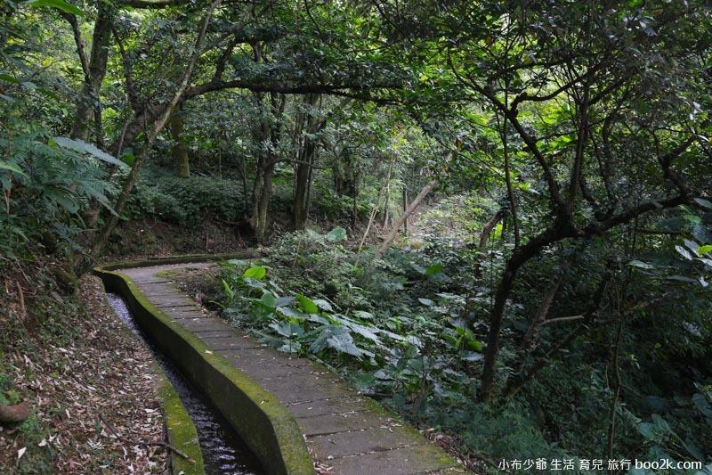 青山步道-9