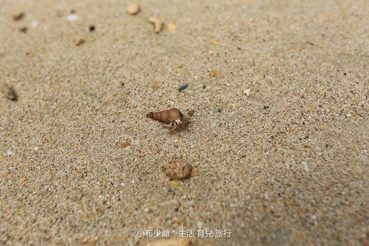 日本 沖繩 古利宇大橋 無料美景 沙灘玩水去-65