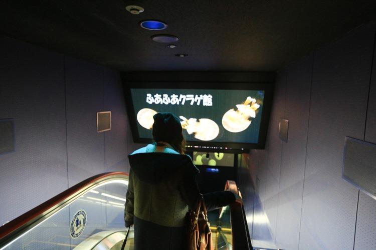 大阪 海遊館-47