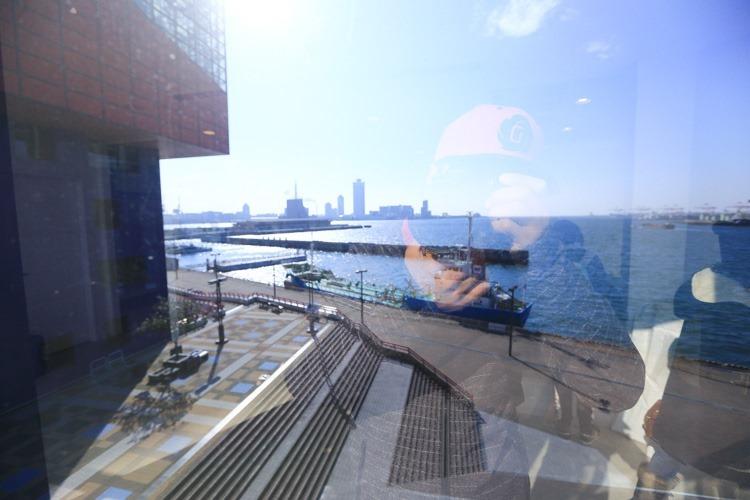大阪 海遊館-63