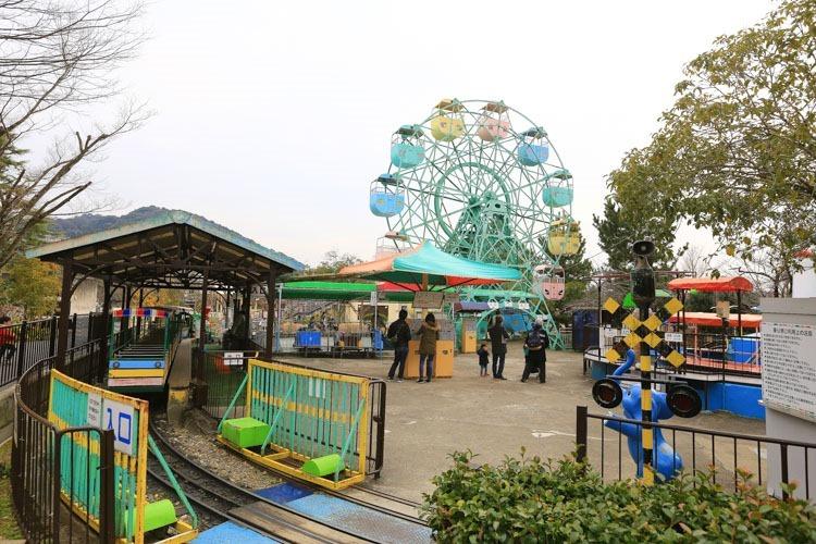 京都 動物園 (22 - 78)