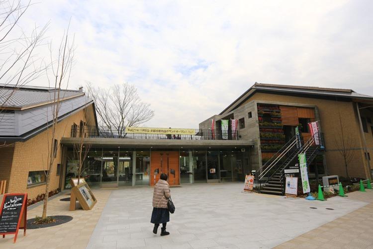 京都 動物園 (3 - 78)