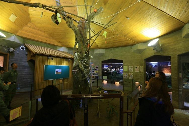 京都 動物園 (37 - 78)