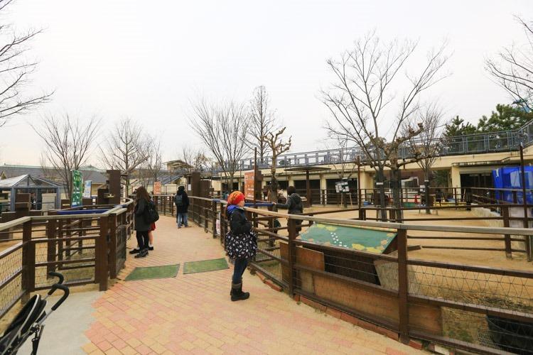 京都 動物園 (57 - 78)