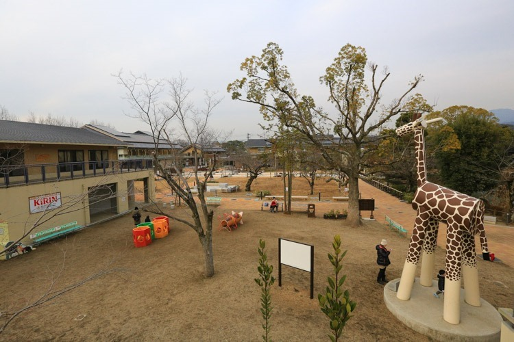 京都 動物園 (67 - 78)