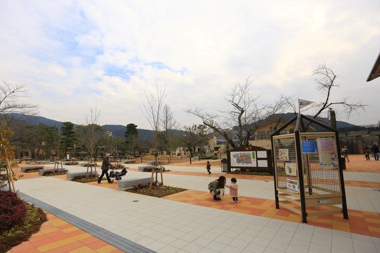 京都 動物園 (7 - 78)