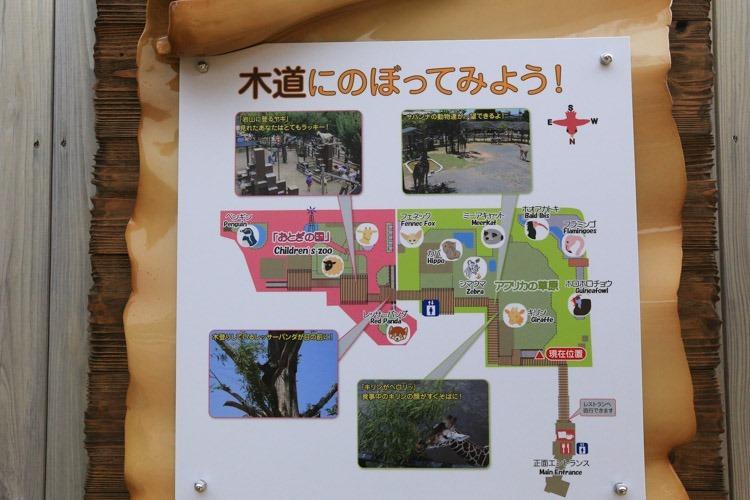 京都 動物園 (75 - 78)