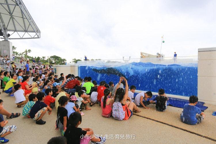 沖繩 北部 美麗海 親子遊-100