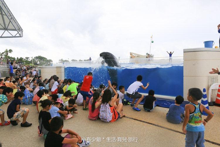 沖繩 北部 美麗海 親子遊-101