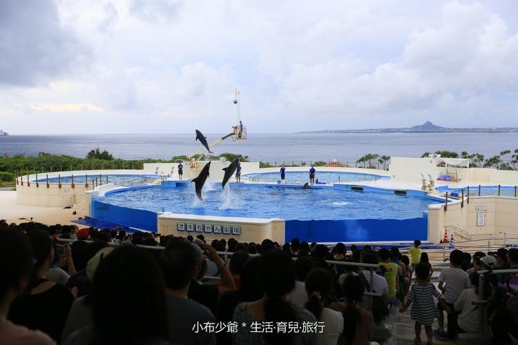 沖繩 北部 美麗海 親子遊-97