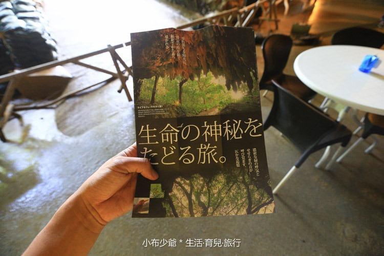 日本 沖繩 南部 玉泉洞鐘乳石洞裡的和嘆咖啡-57