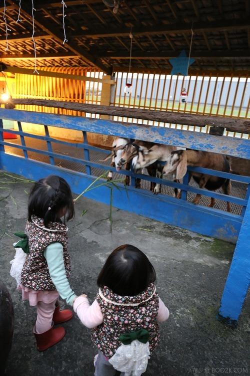 [宜蘭親子餐廳]水鹿咖啡廳餵羊去 藏在咖啡廳裡的小觀光牧場IMG_6984