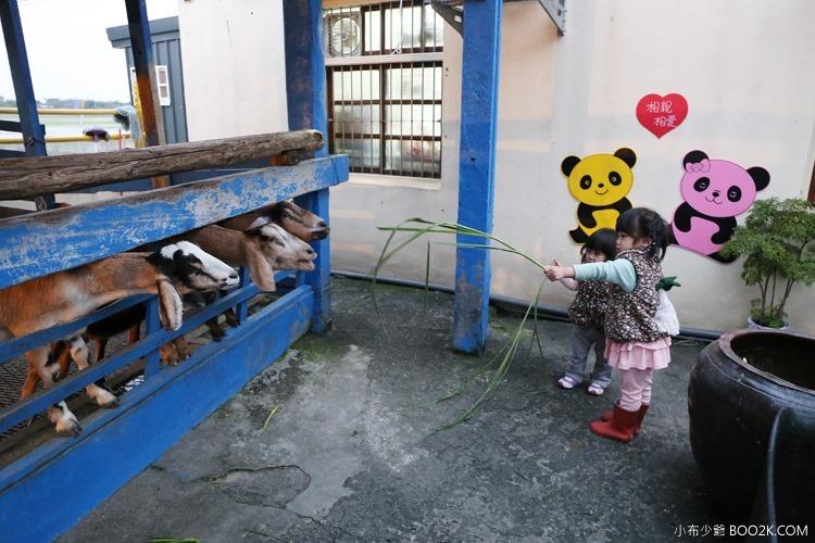 [宜蘭親子餐廳]水鹿咖啡廳餵羊去 藏在咖啡廳裡的小觀光牧場IMG_6987